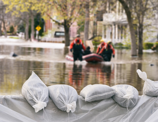 Natural Catastrophe And Disaster Fraud
