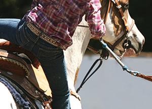 NovDec-falling-saddle